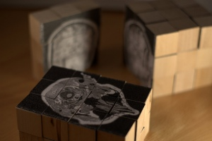 Stephen hampshire_brain scan puzzle_2009